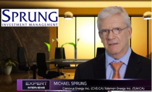 Portfolio Management Michael SprungSmallcappower value resource stocks