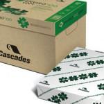 Stockwatch Cascades fine paper business HIG Capital