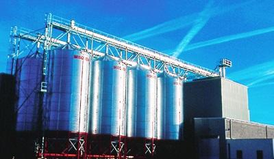 AGT Food Ingredients TSE:AGT profit growth